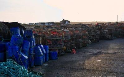 A crabbing at Mudeford