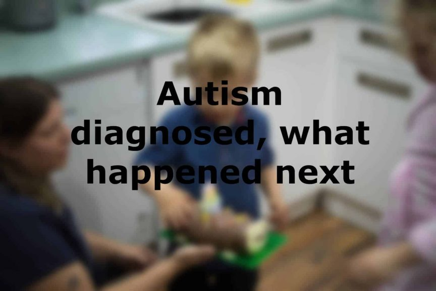 Autism diagnosed what happened next