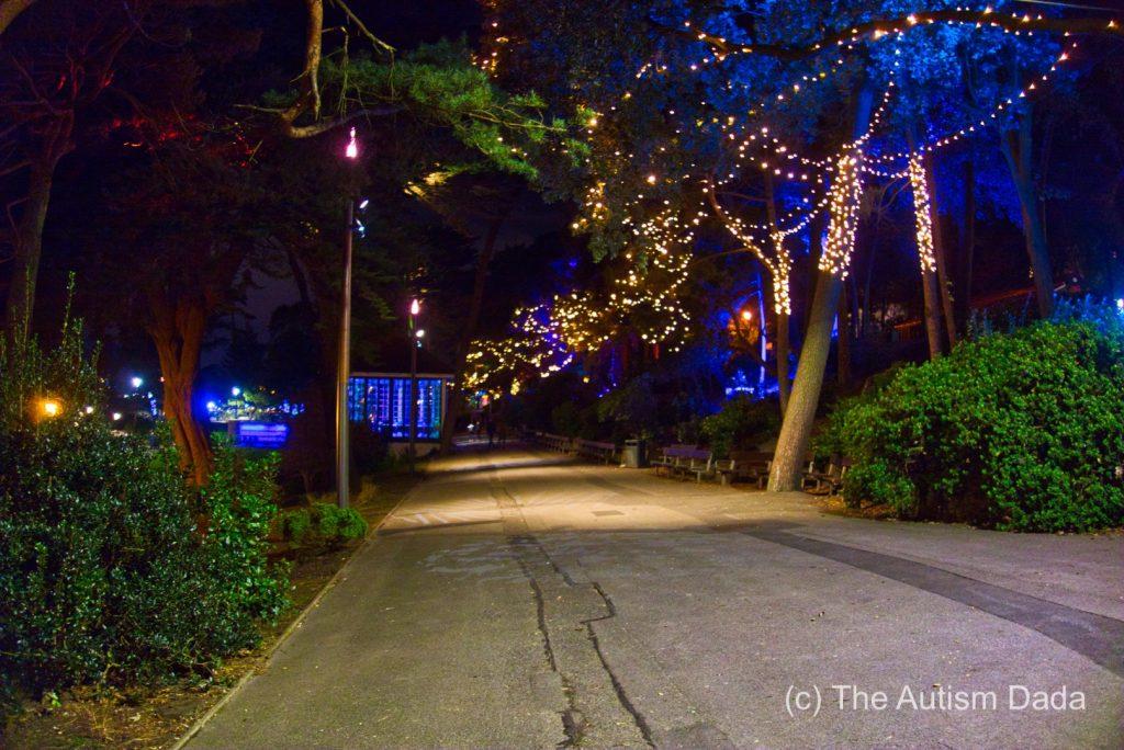 Trees Light Up