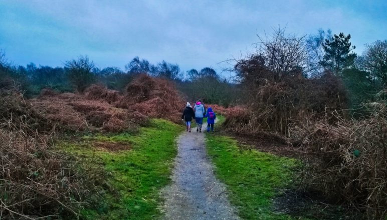 Our Christmas day walk